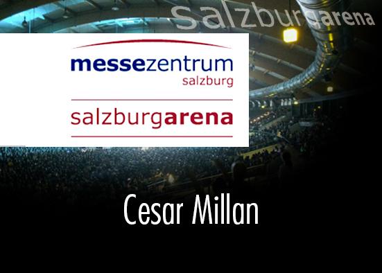 Salzburg-Cityguide - Eventfoto - ok_www_salzburg_arena_0704.jpg