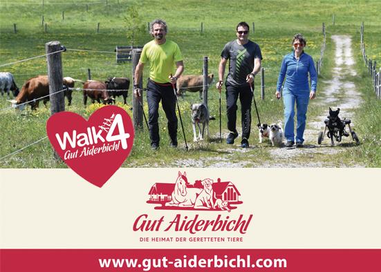 Salzburg-Cityguide - Eventfoto - ok_walk_4_gutaiderbichl_2019.jpg