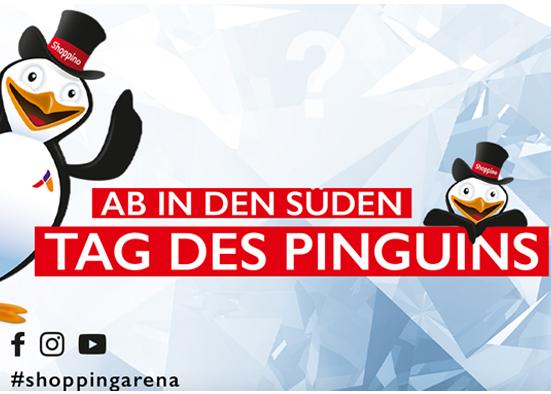 Salzburg-Cityguide - events - OK_SA_PINGUIN_2021