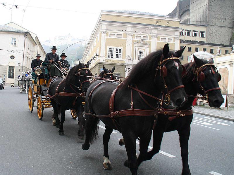 Salzburg-Cityguide - Foto - 024_umzug.jpg