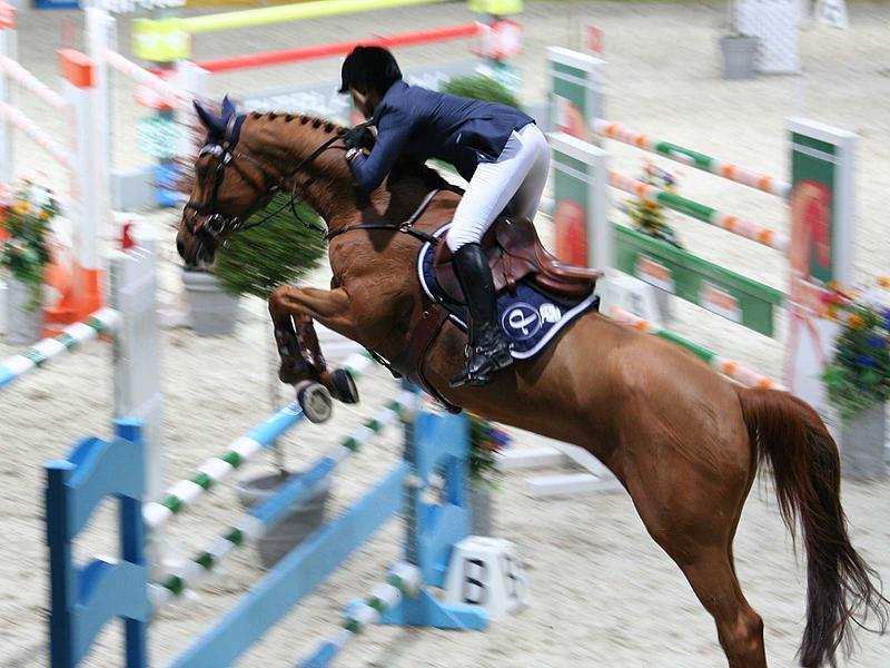 Salzburg-Cityguide - Foto - 222_PAHI_HorsedeLuxe.jpg