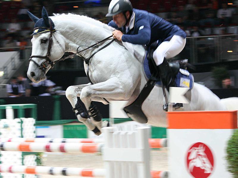 Salzburg-Cityguide - Fotoarchiv - 079_PAHI_horse.jpg