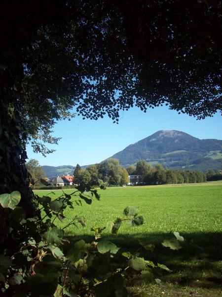 Salzburg-Cityguide - Foto - 11_10_01_rus_gerald_herrmann_023.jpg