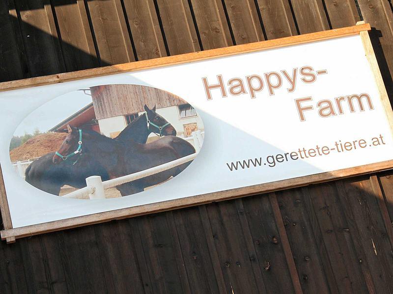 Salzburg-Cityguide - Fotoarchiv - 11_10_04_happys_farm_uwe_001.jpg