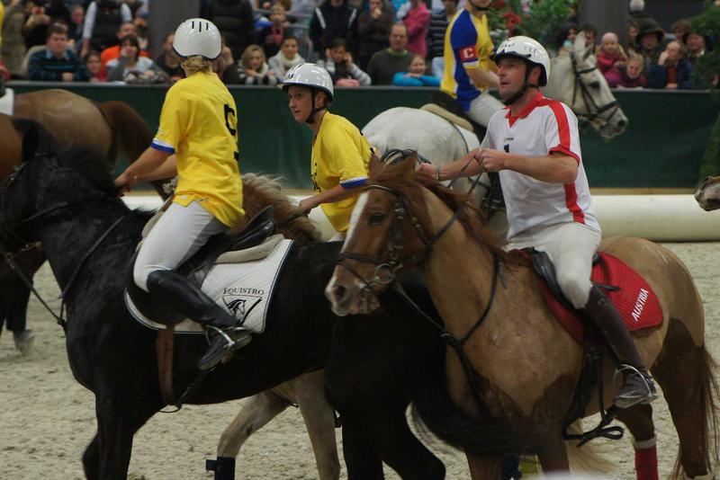 Salzburg-Cityguide - Foto - 111203_06_pahi_horseball_r_029.jpg