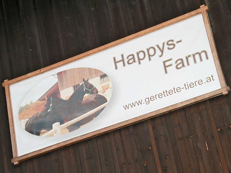 Salzburg-Cityguide - Fotoarchiv - 11_12_17_happys_farm_uwe_001.jpg