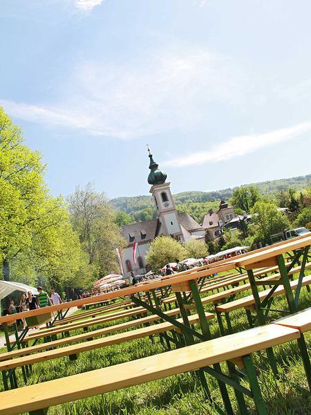 Salzburg-Cityguide - Fotoarchiv - 12_05_01_aigen_maibaum_uwe_002.jpg