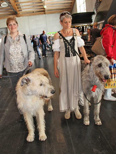 Salzburg-Cityguide - Foto - 12_05_18_worlddogshow_uwe_001.jpg