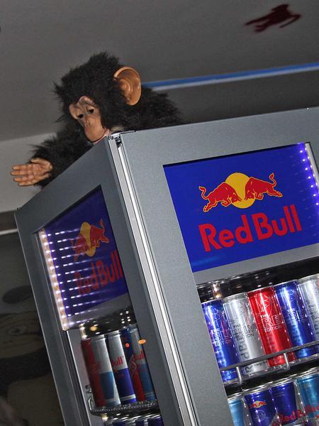 Salzburg-Cityguide - Foto - 19_05_12_monkeys_002.jpg