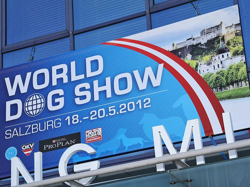 Salzburg-Cityguide - Fotoarchiv - 12_05_20_worlddogshow_uwe_001.jpg
