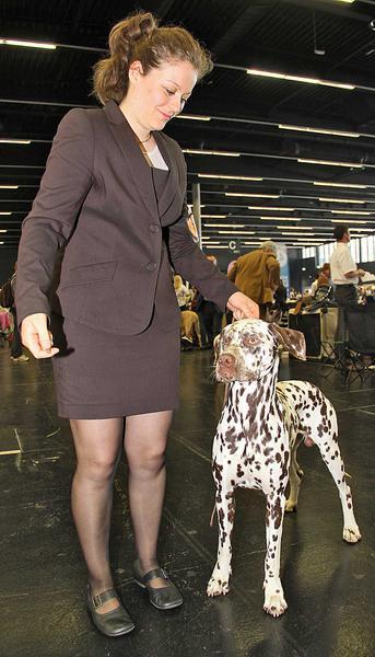 Salzburg-Cityguide - Foto - 12_05_20_worlddogshow_uwe_001.jpg