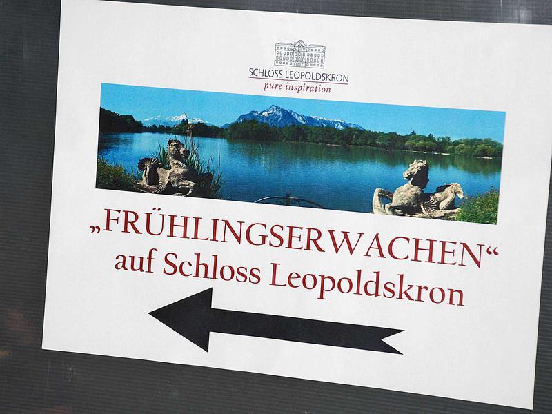 Salzburg-Cityguide - Fotoarchiv - 13_04_26_fruehling_enthammer_001.jpg