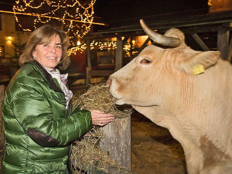 Salzburg-Cityguide - Foto - weihnachtsmarktaufhausermed1411200339.jpg