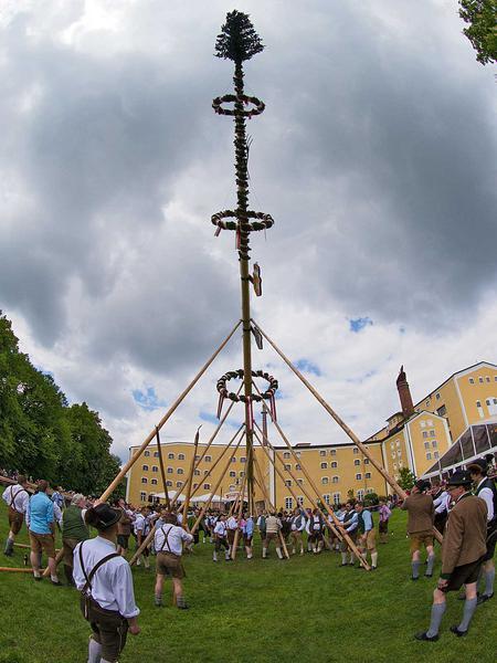 Salzburg-Cityguide - Foto - stiegl_maibaum20140504003.jpg