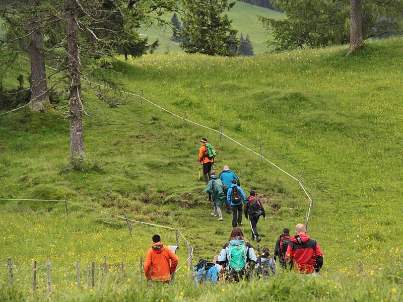 Salzburg-Cityguide - Foto - 140516_charitywanderung_fhwn_001.jpg