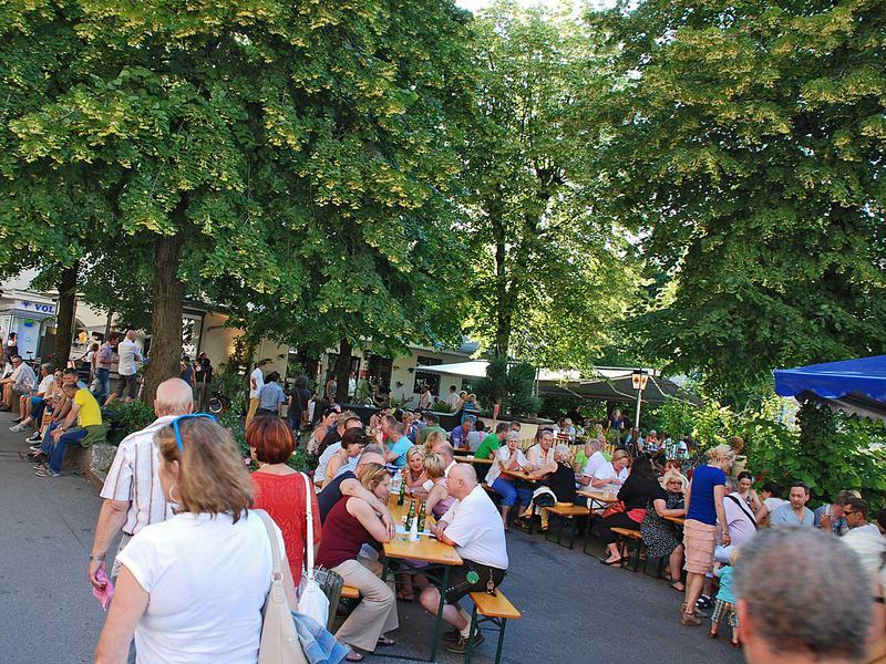 Salzburg-Cityguide - Foto - 140607_kaiviertelfest_hermann_001.jpg