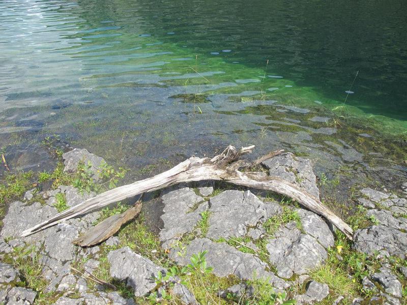 Salzburg-Cityguide - Foto - 06073_10152390573438163_7585182902846198017_n.jpg