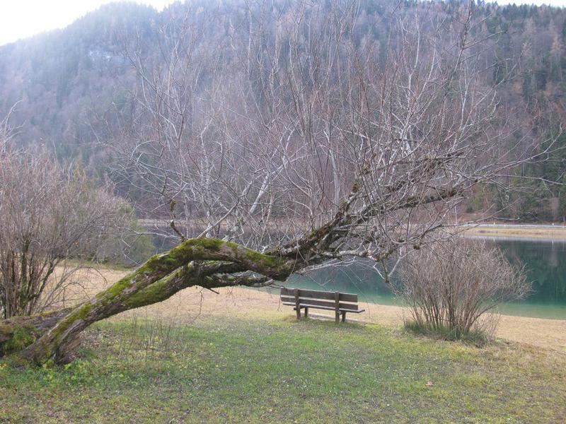 Salzburg-Cityguide - Foto - 7598_10152590096428163_5618316501241800529_n.jpg