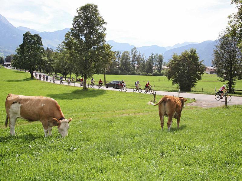Salzburg-Cityguide - Fotoarchiv - bischofswiesen.jpg