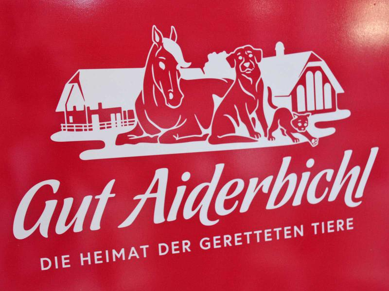 Salzburg-Cityguide - Foto - 190630_opening_gutaiderbichl_uwe_001.jpg