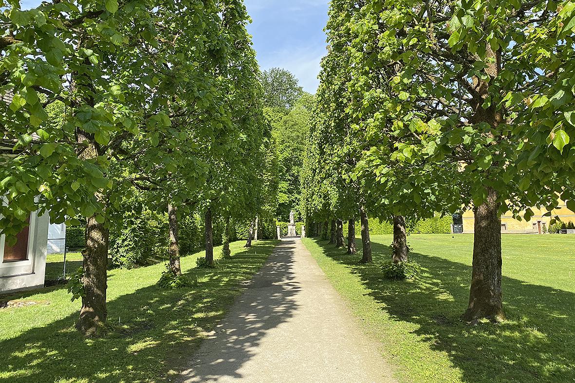 Salzburg-Cityguide - Foto - 2020_Schlosspark_Hellbrunn_Uwe_004