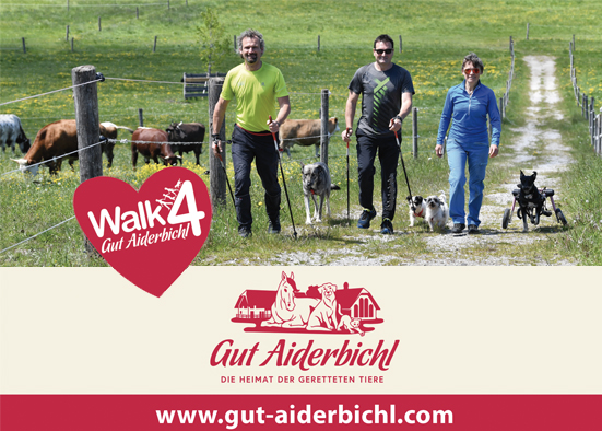 Salzburg-Cityguide - Newsfoto - ok_walk_4_gutaiderbichl_2019.jpg