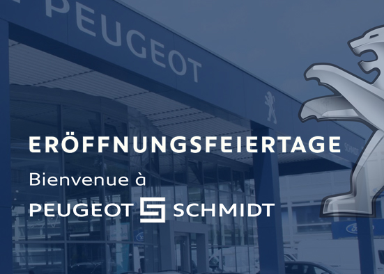 Salzburg-Cityguide - Newsfoto - ok_fordschmidt_eft_2019.jpg